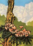 シャクナゲRhododendrons